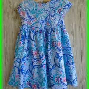 Gymboree Blue Butterfly Floral Dress Size 5T